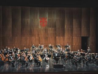 Zubin Mehta e l'Orchestra del MMF (foto Michele Monasta)