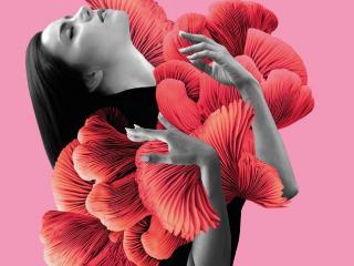 Mood Design - Chiara Cordopatr